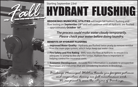2019HYDRANTFLUSHING_Fall-1
