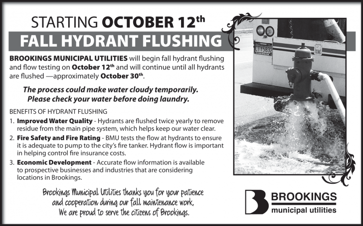 2020HYDRANTFLUSHING_FALL-1